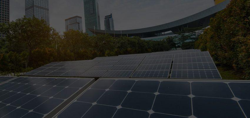 solar-case-study-zamm